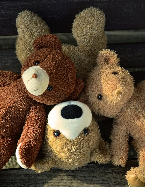 teddy-1183248_640