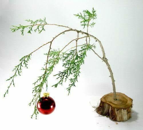 THE CHRISTMAS TEXT